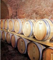 I vini della Riviera del Garda