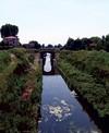 corso d'acqua a Bomporto (2)