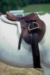 il cavallo nella tradizione Oristanese