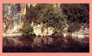 Scorcio del Rio Araxi nell'oristanese