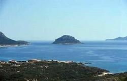 Da Golfo Aranci: Isola di Figarolo