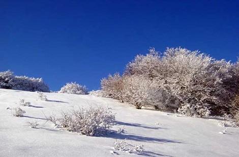 paesaggio con neve in Alta val d'Arda