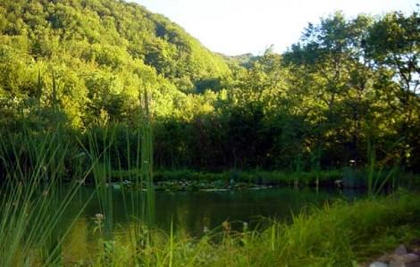Lago dei Lupi nel comune di Morfasso