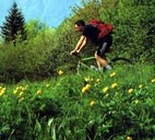 itinerari in mountain bike nel verde