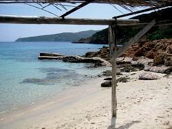 Immersioni all'isola dell'Asinara